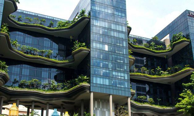 Hotel luxuoso em Singapura é exemplo de empreendimento sustentável
